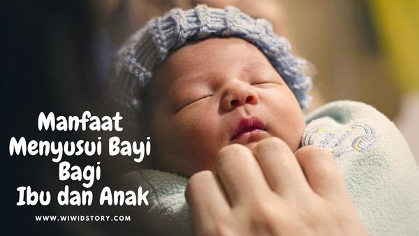 Manfaat Menyusui Bayi