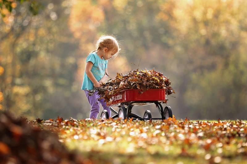 Anak-Anak dan Sampah