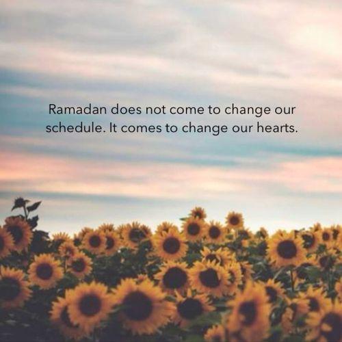 Ramadhan Terbaik